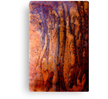 Night in the Forest Canvas Print
