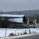 Rt 14A Barn by Cheri Perry