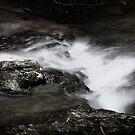 Springbrook Falls in Black and White by Lozzar Landscape