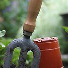Urban Gardening by naffarts