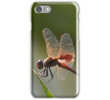 Dragonfly Drama iPhone Case/Skin