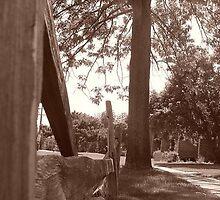 Broken Fence by sternbergimages