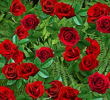 Ferns with Red Roses by Skaylaki