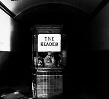 The Reader by Gary Rondez