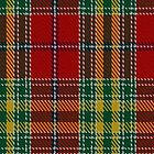 00203 Dunblane District Tartan by Detnecs2013