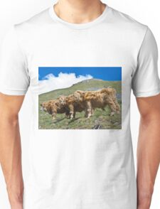 Highland cattle all in a row T-Shirt
