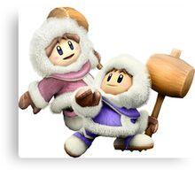 Ice Climbers - Super Smash Bros Canvas Print