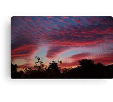 Dandenong ranges sunrise series #3 Canvas Print