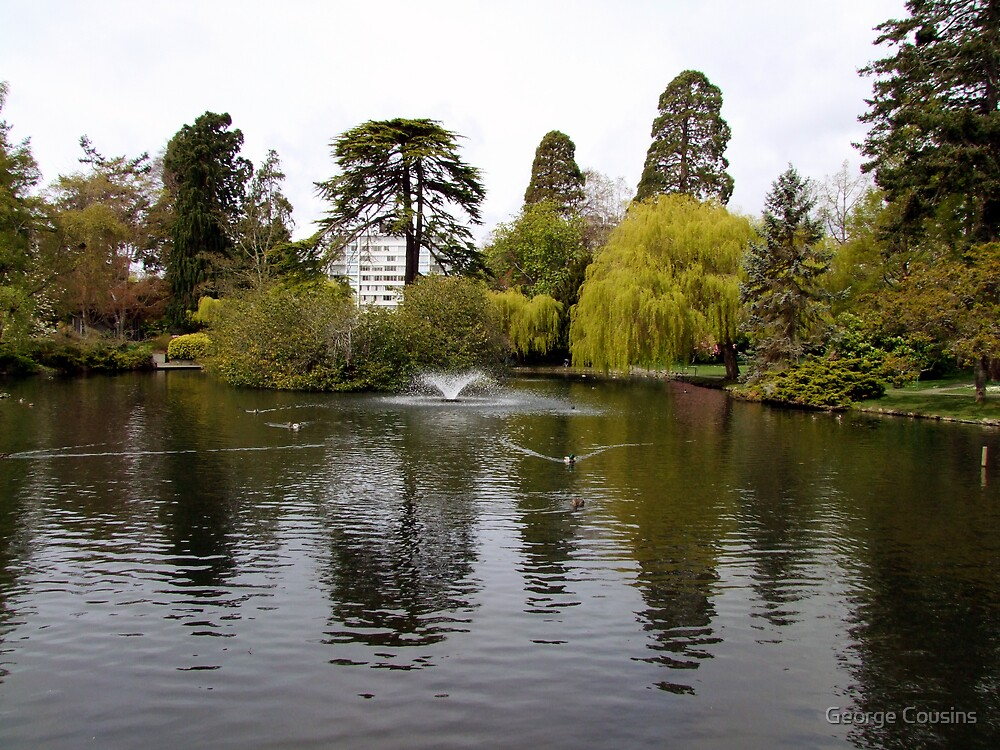 Beacon Hill Park by George Cousins