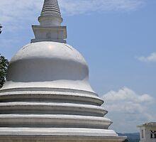Buddhist Temple by daytona235