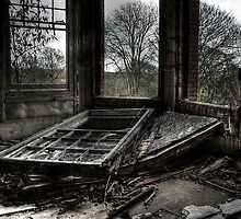 Fallen Frame by Richard Shepherd