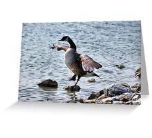 "The Karate ""Goose""? Greeting Card"