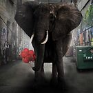 Elephant  Alley by Cliff Vestergaard