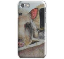 Greedy Pig iPhone Case/Skin