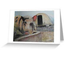 Greedy Pig Greeting Card