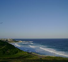 Newcastle Beach Overview by reflector
