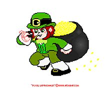 Pixel Leprechaun Photographic Print