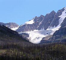 Glaciers and Pine Beetles by Magnum1975