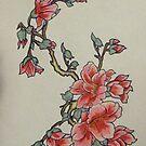 Cherry Blossom by Alexandra Felgate