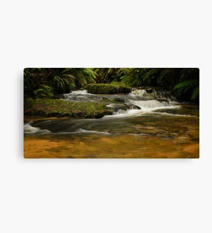 Leura Cascades. Canvas Print