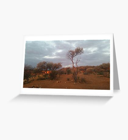 Outback.. Greeting Card