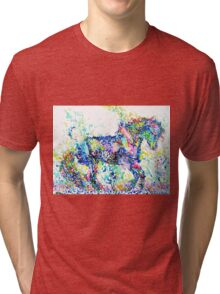 HORSE PAINTING.4 Tri-blend T-Shirt