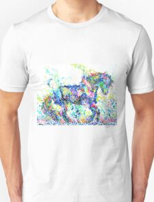 HORSE PAINTING.4 T-Shirt