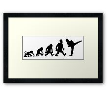 karate  taekwondo evolution darwin Framed Print