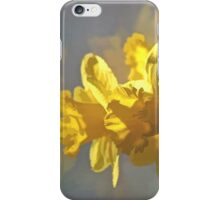 Morning Daffodils iPhone Case/Skin