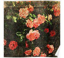 Vintage flowers scripts Poster
