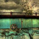 Abandoned Pool by Matthew Jones