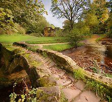 Sallys Bridge - Wycoller Village - Pendle - Lancashire by eddiej