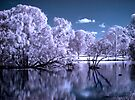 Magical Lake by yolanda