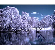 Magical Lake Photographic Print