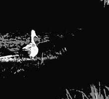 sitting duck by NostalgiCon