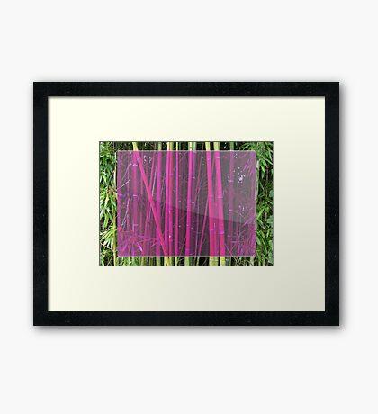 Bambou Framed Print