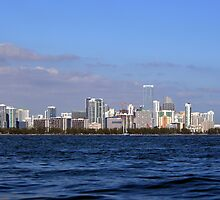 Miami Skyline by Dave Hein