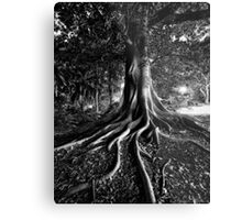 Early Evening In The Garden Of Good And Evil Metal Print