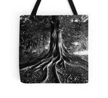 Early Evening In The Garden Of Good And Evil Tote Bag