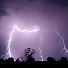 Lightning (4) by Clive
