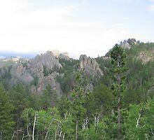 Rock Formation Landscape by silverdragon