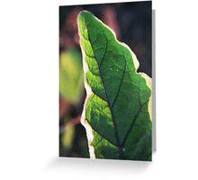 Purple Veined Leaf Greeting Card