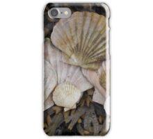 Memories of sea shells.  iPhone Case/Skin