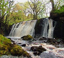 Waterfall at Barr-Beithe on Allt Beochlich by Alexander Mcrobbie-Munro