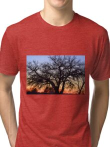 Silhouette At Sunset Tri-blend T-Shirt