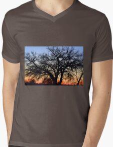 Silhouette At Sunset Mens V-Neck T-Shirt