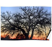 Silhouette At Sunset Poster