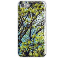Tree & sky iPhone Case/Skin