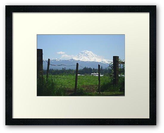 Rainier Country by Tori Snow