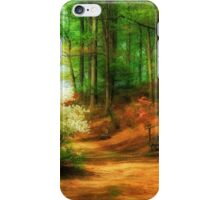 Favorite Path iPhone Case/Skin